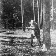 The Timber Girls Heritage Project