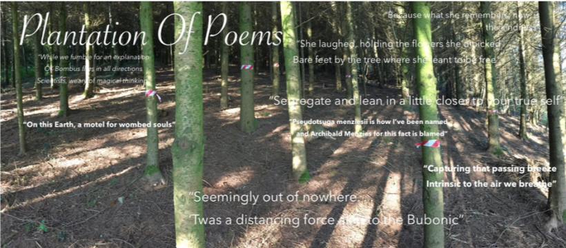 Plantation of Poems